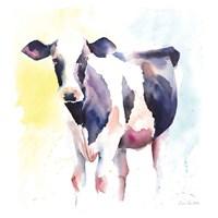 Holstein IV Framed Print