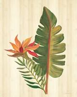 Tropical Garden VI Framed Print