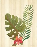 Tropical Garden V Framed Print