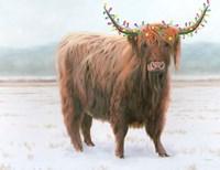 King of the Highland Fields Lights Crop Fine Art Print