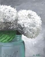Hydrangea Grannies Garden 1 Fine Art Print