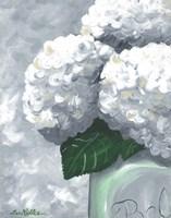 Hydrangea Grannies Garden 2 Fine Art Print