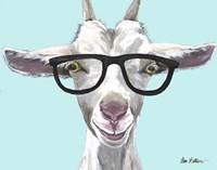 Goat Patsy with Glasses Fine Art Print