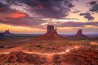 Desert Song Fine Art Print