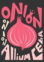 Kitchen Onion Fine Art Print