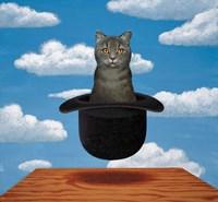 Magritte Cat Fine Art Print