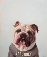 Earl Gray Fine Art Print