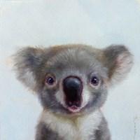 Lil Koala Fine Art Print