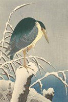 Heron in Snow, 1920-1930 Framed Print