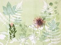 A Myriad Celebration of Plants Fine Art Print