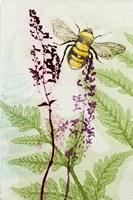 Bees Amongst the Liriope Fine Art Print