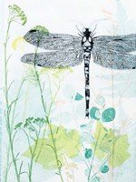 Dragonfly And The Healing Plant Fine Art Print