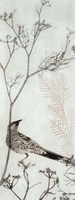 Wattlebird Resting on a Branch Fine Art Print