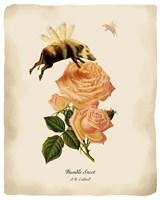 Bumblesnoot Fine Art Print