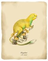 Kangakeet Fine Art Print