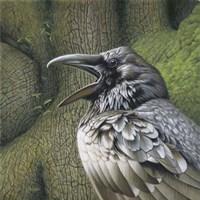 Raven Earth Fine Art Print