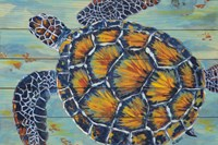 Sea Turtle Fine Art Print
