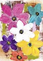 Garden Of Colour Fine Art Print