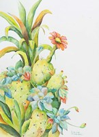 Fruits of the Desert Fine Art Print