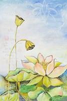 Rising Lotus Fine Art Print