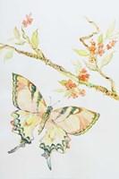 Wings of Blue 2 Fine Art Print