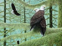 A Gathering of Eagles Fine Art Print