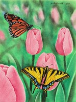 Butterflies and Tulips Fine Art Print