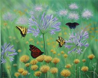 Butterflies are Free Fine Art Print