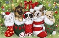 Dogs in Stockings Fine Art Print