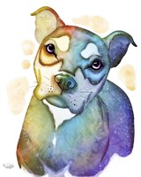 Pets- Nick the Dog Fine Art Print