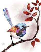 Songbirds- Fairywren Red Leaves Fine Art Print