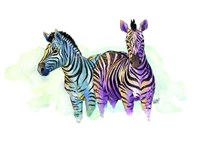 Watercolor Safari- Zebras Fine Art Print
