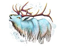 Woodlands- Teal Elk Fine Art Print