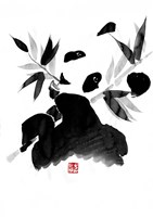 Eating Panda Fine Art Print