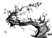 Old Dead Tree Fine Art Print