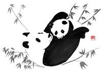 Panda Family Fine Art Print