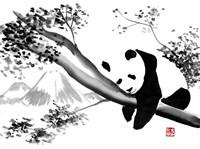 Panda In His Tree Fine Art Print