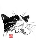Begging Cat Fine Art Print