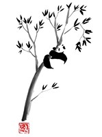 Panda In The Tree Fine Art Print