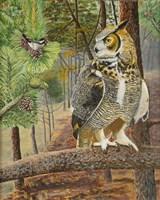 Chicadee and Owl Fine Art Print
