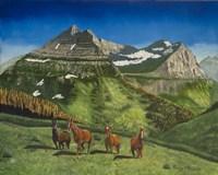 Four Mountain Horses Fine Art Print