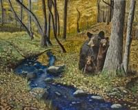 2 Bears Autumn Stroll Fine Art Print