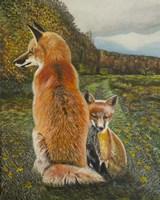 Red Fox and Kit Fine Art Print