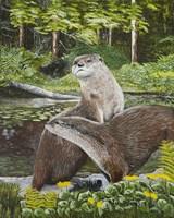 Two Otters Fine Art Print
