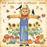 Sunflower Seeds Fine Art Print