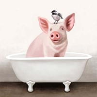 Pig in Bathtub Framed Print
