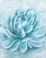 Aqua Succulent III Fine Art Print