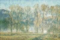 Peaceful Tree Line Fine Art Print