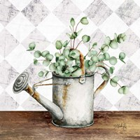 Eucalyptus White Watering Can Fine Art Print