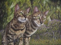 Albus and Boo the Bengal Cats Fine Art Print